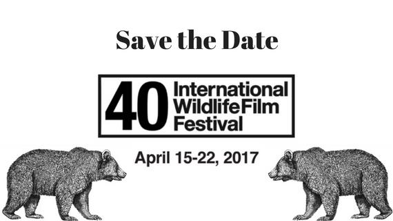 40th International Wildlife Film Festival