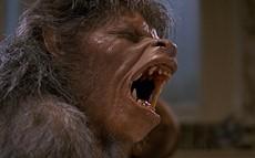 fs_american_werewolf_800_thumb.jpg