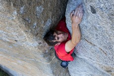 FreeSolo_alex-honnold900_thumb.jpg