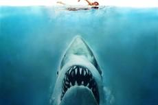 JAWS4JPEG_thumb.jpg