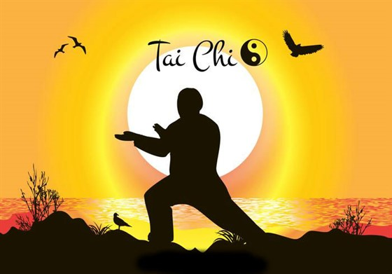 Image result for Tai Chi pic