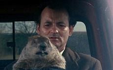 fs_groundhog_day_800_thumb.jpg
