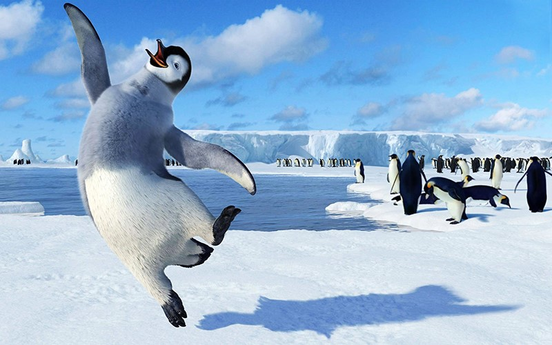 Is Happy Feet Scam Reviews – All You Need To Know!