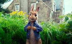 fs_peter_rabbit_800_thumb.jpg
