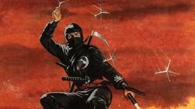 revenge_ninja_16x9_thumb.jpg