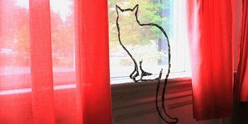 TLRTY_windowsill.jpg