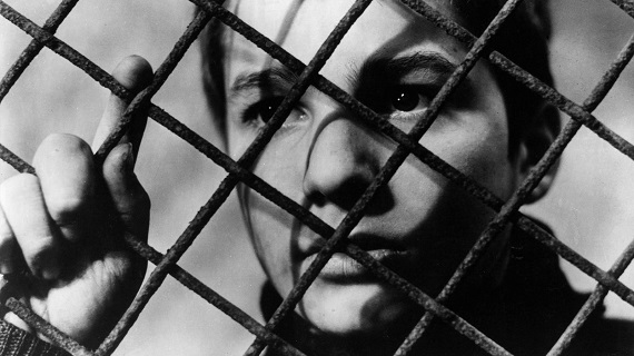 The 400 Blows on 35mm