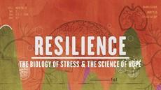Resilience_thumb.jpg