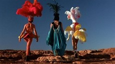 adventures-of-priscilla-queen-of-the-desert-the_1600x775_thumb.jpg
