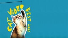 mspfilm-Cat_Video_Fest_2021-still-1_thumb.jpg