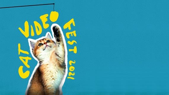 Cat Video Fest 2021