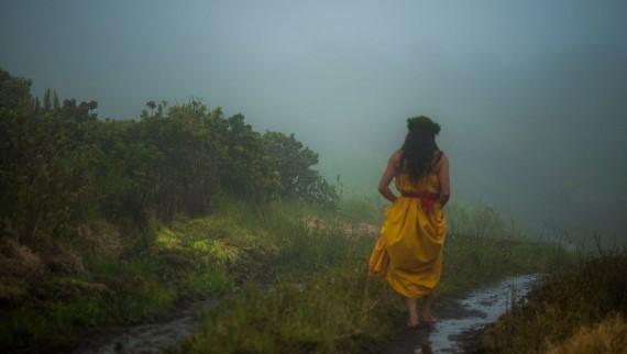 Saving 'Ohi'a -- Hawaii's Sacred Tree + takayna