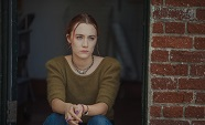 Lady Bird.crop2.jpg