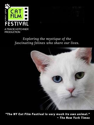 NY Cat Film Festival