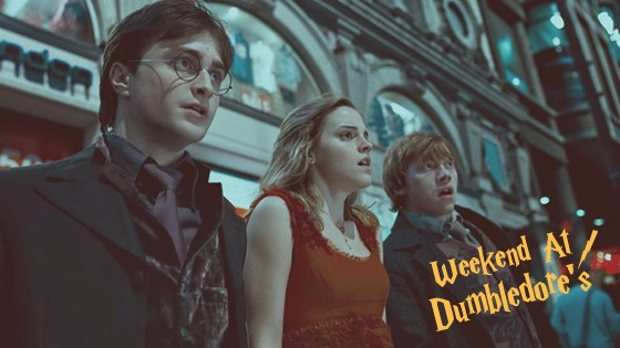 dumbledore_slides7 copy.jpg