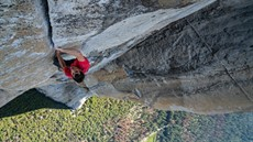 freesolo_thumb.jpg