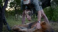 Trophy_Still.jpg